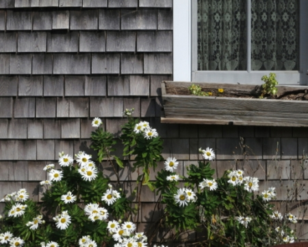 1-2 Old Ann Page Way, Provincetown (2012), by David W. Dunlap.