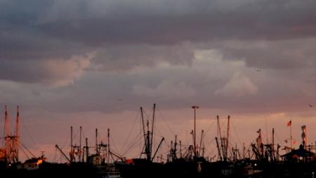 1 MacMillan Wharf - 01, Provincetown (2009), by David W. Dunlap.