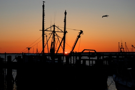 Sentinel, Provincetown (2011), by David W. Dunlap.