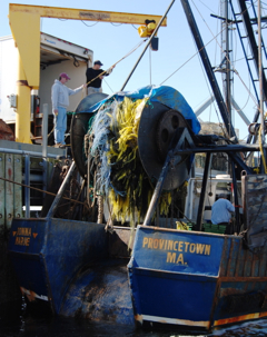 Offloading the Donna Marie, Provincetown (2010), by David W. Dunlap.