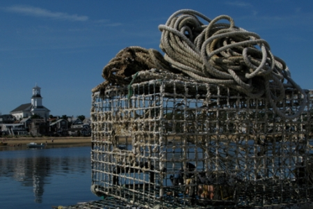 MacMillan Wharf, Provincetown (2008), by David W. Dunlap.
