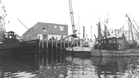 MacMillan Wharf, Provincetown (1988). J. L. Marshall & Sons. Courtesy of the Provincetown History Preservation Project (Municipal Collection).