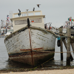 Vessel Vast Explorer II, Provincetown (2011), by David W. Dunlap.