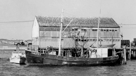 16 MacMillan Wharf, Provincetown (ND), by Ross Moffett. Courtesy of the Provincetown History Preservation Project (Moffett Collection).