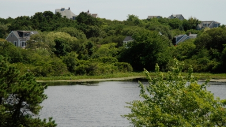 South shore of Shank Painter Pond, Provincetown (2010), by David W. Dunlap.