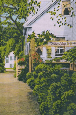 4 Kiley Court, Provincetown (1929). Scrapbooks of Althea Boxell: Book 2, Page 72. Courtesy of the Provincetown History Preservation Project (Dowd Collection).