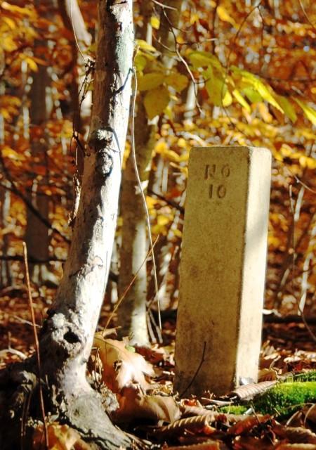 Smallpox Cemetery, by David W. Dunlap (2009).