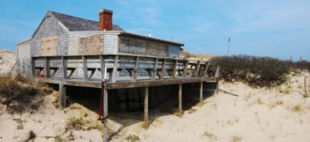 Adams shack, by David W. Dunlap (2010).
