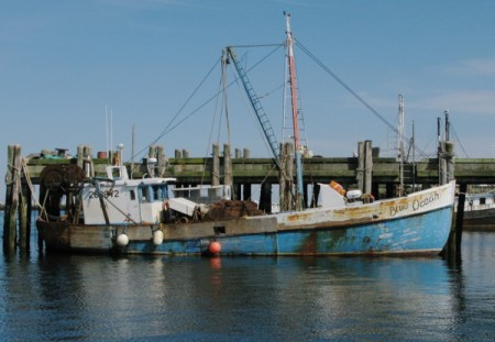 F/V Blue Ocean, by David W. Dunlap (2008).