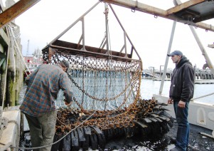 F/V Glutton, scallop dredge, by David W. Dunlap (2011).