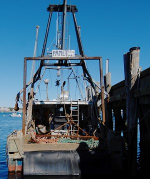 F/V Pamet, by David W. Dunlap (2012).